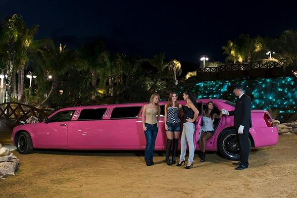 Despedida de soltera en Limusina Chrysler 300C